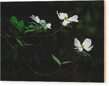 Beckon Wood Print