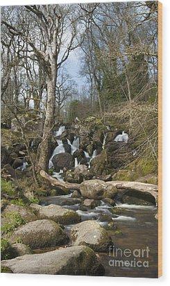 Becky Falls Dartmoor Wood Print by Donald Davis