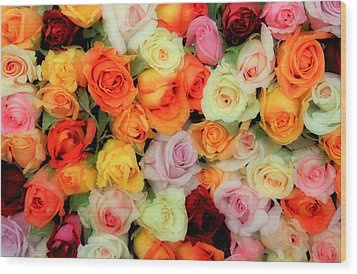 Bed Of Roses Wood Print by Tony Grider