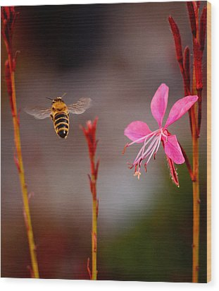 Wood Print featuring the photograph Bee And Flower by Janis Knight
