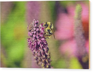 Bee Happy Wood Print by Maria Angelica Maira