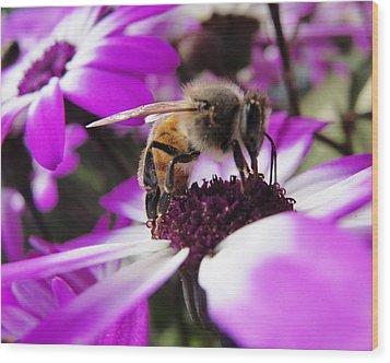 Bee Happy Wood Print by Norma Brock