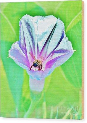 Bee In Pastel Wood Print