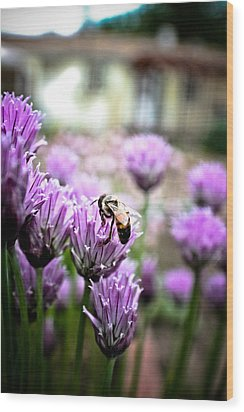 Bee In The Chives Wood Print by Joel Loftus