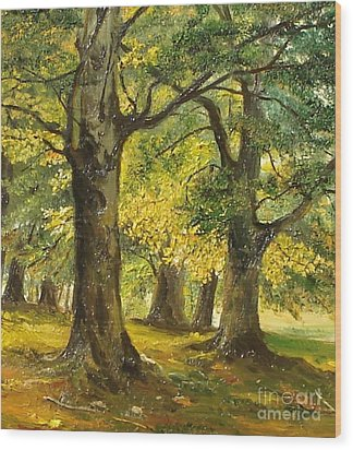 Beeches In The Park Wood Print by Sorin Apostolescu