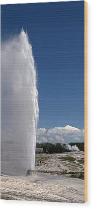 Beehive Geyser - Yellowstone National Park Wood Print by Brian Harig