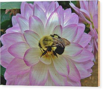 Bee's Delight Wood Print