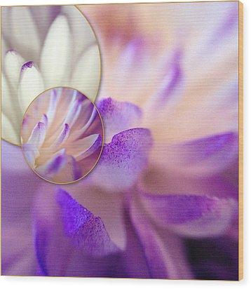 Bee's Eye View Wood Print by Susan Maxwell Schmidt