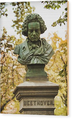Beethoven In Central Park Wood Print by Alice Gipson