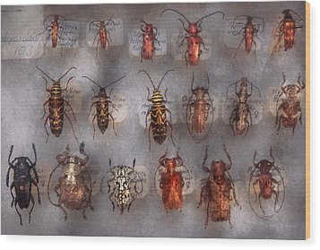 Beetles - The Usual Suspects  Wood Print by Mike Savad