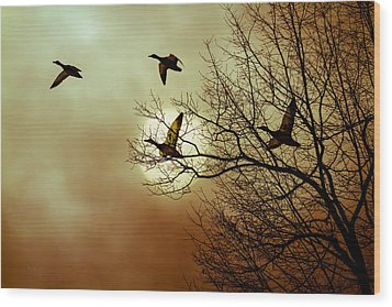 Before A Winter Sky Wood Print by Bob Orsillo