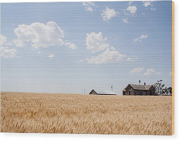 Wood Print featuring the photograph Before The Harvest by Dawn Romine