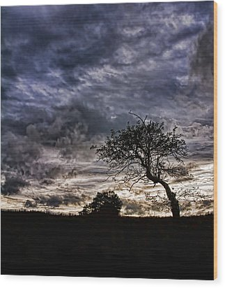 Nova Scotia's Lonely Tree Before The Storm  Wood Print