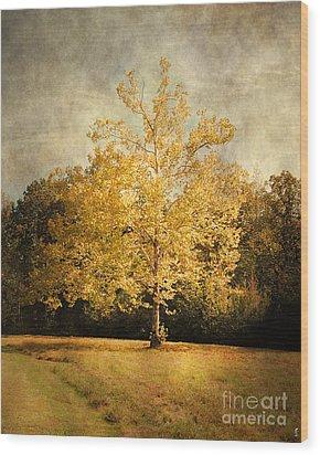 Beginning Of Autumn Wood Print by Jai Johnson
