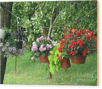 Begonias On Line Wood Print by Ausra Huntington nee Paulauskaite