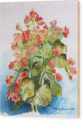 Begonias Still Life Wood Print