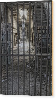 Behind Bars Wood Print by Don Schroder