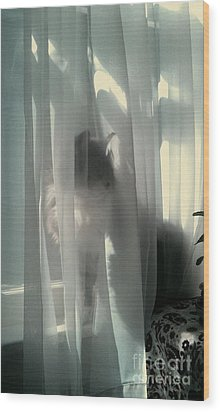 Wood Print featuring the photograph Behind The Curtain by Jacqueline McReynolds