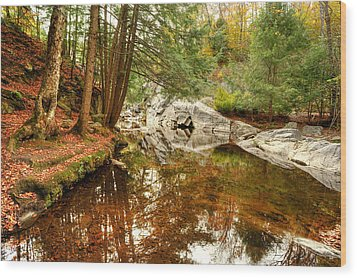 Behind The Falls Wood Print by Dennis Clark
