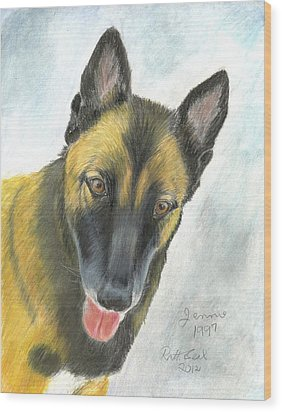 Belgian Malinois Wood Print by Ruth Seal