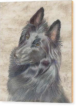 Belgian Sheepdog Wood Print by Ruth Seal