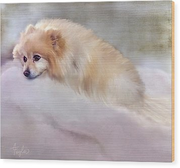 Bella Boo Wood Print by Colleen Taylor
