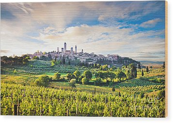 Bella Toscana Wood Print