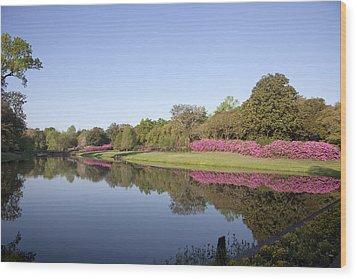 Bellingrath Gardens In Theodore Wood Print by Carol M Highsmith