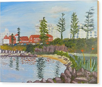 Belmore Basin From The North Sea Wall Wood Print by Pamela  Meredith
