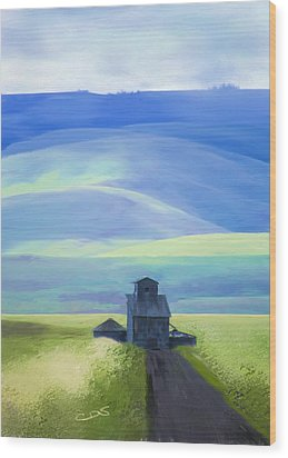 Below The Blues Wood Print by Dale Stillman
