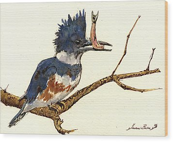 Belted Kingfisher Bird Wood Print