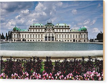 Wood Print featuring the photograph Belvedere Palace by Joe  Ng