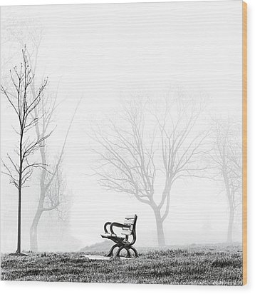 Bench Wood Print by Brian Carson