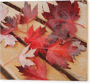 Bench Cushion Wood Print