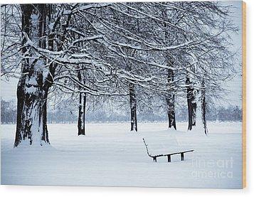 Bench In Snow Wood Print by Lana Enderle