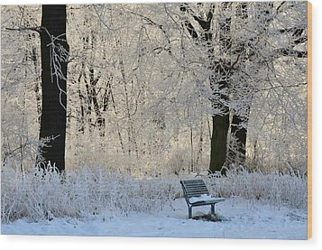 Bench In The Park Wood Print by Gynt
