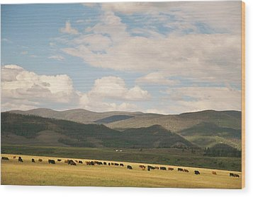 Wood Print featuring the photograph Beneath The Open Sky I Roam by Shirley Heier