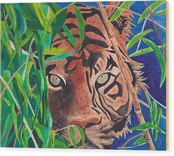 Bengal Eyes Wood Print by Molly Williams