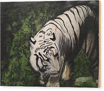 Bengal's White Tiger Wood Print