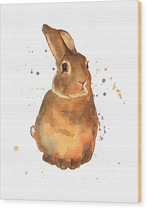 Benjamin Bunny Wood Print by Alison Fennell