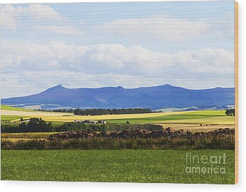 Bennachie Wood Print