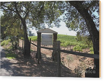 Benziger Winery In The Sonoma California Wine Country 5d24592 Wood Print by Wingsdomain Art and Photography