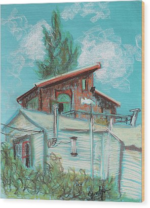 Berkeley Neighbor Houses On A Sunny Day Wood Print by Asha Carolyn Young