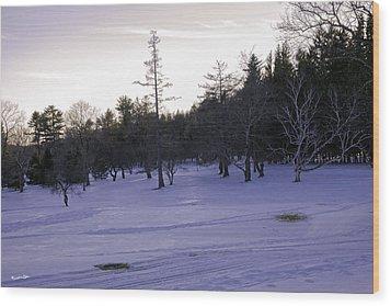 Berkshires Winter 5 - Massachusetts Wood Print by Madeline Ellis