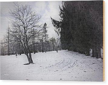 Berkshires Winter 9 - Massachusetts Wood Print by Madeline Ellis