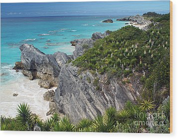 Bermuda Beach Wood Print