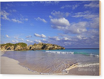 Bermuda Horseshoe Bay Wood Print by Charline Xia