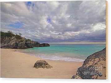 Bermuda Secret Beach Wood Print by Charline Xia