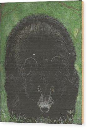 Bernie Wood Print by Sheila Byers