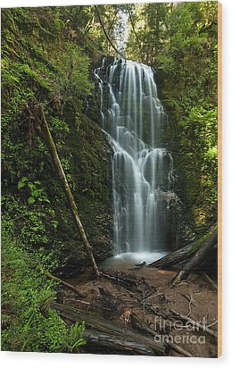 Berry Creek Falls In Big Basin Wood Print by Matt Tilghman